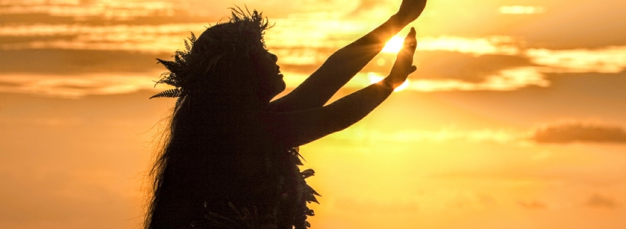 Silhouette Hula Dancer