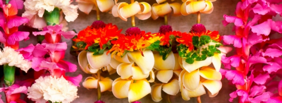 Display of beautiful Hawaiian leis