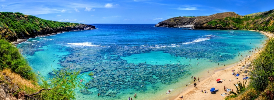 Where To Snorkel On Oahu