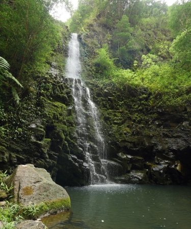 Beautiful waterfall on Oahu
