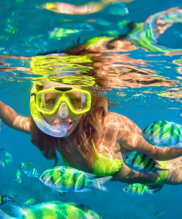 Woman snorkeling among colorful fish