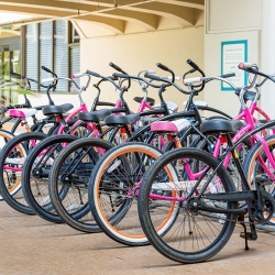 Row of colorful beach cruiser bicycles near Waikiki Beach