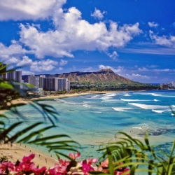 Beautiful views of a Honolulu Beach