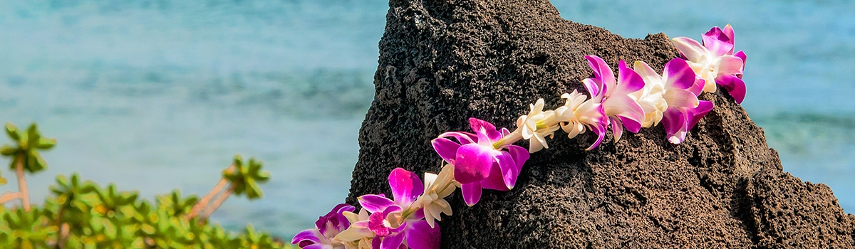 Purple lei draped over a rock
