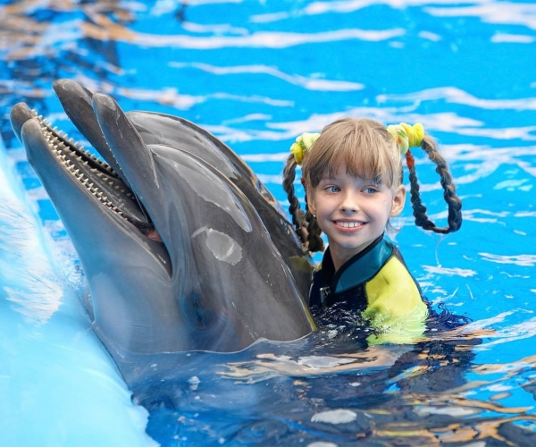 Little Girl Swimming with a Dolphin