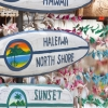 MIni-surfboard Hawaii souvenirs