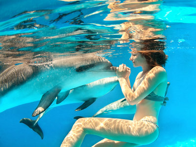 Oatu Hotel Swimming with Dolphins